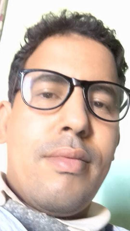 الكاتب، محمد ولد دهمد